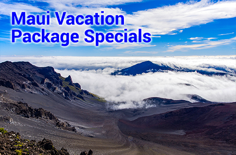 Maui Vacation Package Specials - B Inouye 480x315